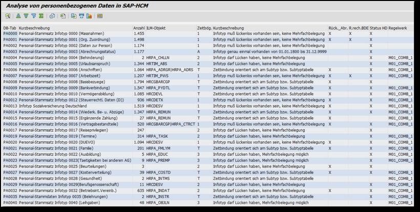 Unser DSGVO-Analysetool für SAP HCM
